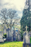 Spring by mystery Belgium cemetery Royalty Free Stock Photography