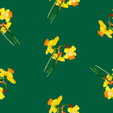 Spring narcissus seamless pattern. Watercolor narcissus seamless pattern. Painted by hand royalty free illustration