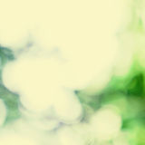 Spring Natural background with abstract defocused bokeh lights Royalty Free Stock Photos