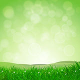 Spring Nature Background Stock Images