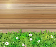 Spring nature background. Green grass and leaf plant, White Gerbera, Daisy flowers and sunlight over wood fence Stock Photo