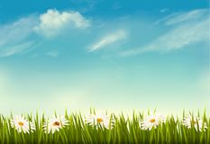 Spring nature background with green grass and sky. Vector Royalty Free Stock Photo