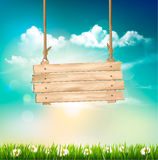 Spring nature background with green grass and wooden sign. Stock Photo