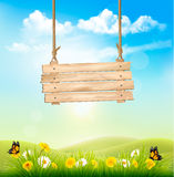 Spring nature background with green grass and wooden sign Royalty Free Stock Photos