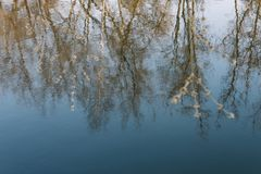 Spring nature background. reflection in water. spring wallpaper. Abstract blurred background. Springtime. copy space. Spring nature background. reflection in royalty free stock photo