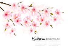 Spring nature background with sakura branch. stock photography