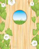 Spring nature background Royalty Free Stock Images