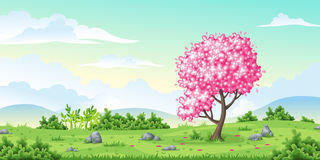 Spring nature background. Vector illustration Stock Photos