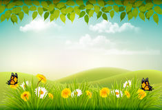 Spring nature landscape background with flowers Stock Photography
