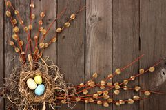 Spring nest corner border with willow branches over rustic wood Royalty Free Stock Photo