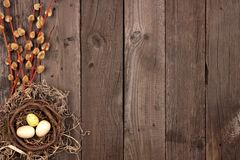 Spring nest side border with willow branches over rustic wood Stock Image