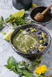 Spring Nettle And Dandelion Smoothie Royalty Free Stock Photos