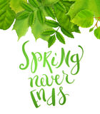 Spring never ends Royalty Free Stock Images