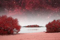 Spring night infrared photography. Stock Photography