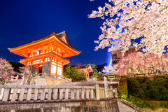 Spring Night in Kyoto Royalty Free Stock Image