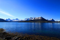 Spring in north og Norway Stock Photography