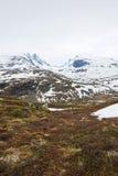 Spring Norway mountains Stock Photos