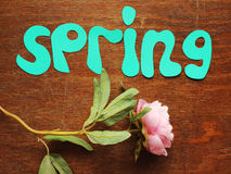 Spring note and flower Stock Photo
