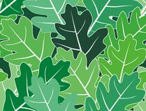 Spring oak green leaves  vector seamless texture Royalty Free Stock Photo