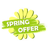 Spring offer with flower, green drawn label Stock Photography