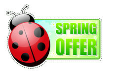 Spring offer green label with ladybird Stock Image