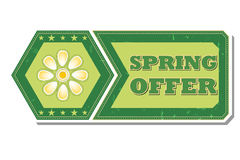 Spring offer with flower  - retro green label Royalty Free Stock Photography
