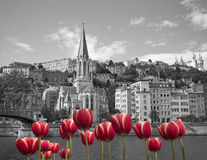Spring in old Lyon Stock Images