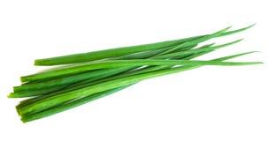 Free Spring Onion Stock Photo - 14540650
