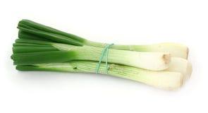 Spring onion Stock Photos