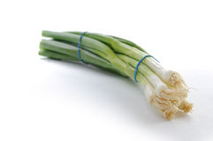 Spring onion. On white background stock image