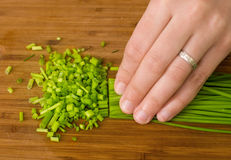 Spring onion Stock Photography