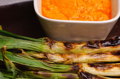 Spring onion Stock Image