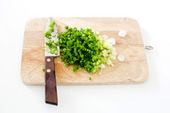Spring onion on  cutting board with knife Stock Image