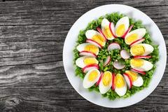 Spring onion, eggs, radish salad, top view Stock Image
