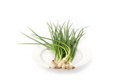 Spring onion isolated Stock Photo