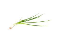 Spring onion isolated Stock Photos