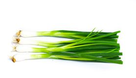 Spring onion isolated on white background stock images