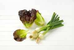 Spring onion and lettuce. Bunch of spring onions and heads of fresh lettuce on white wooden background Royalty Free Stock Image