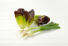 Spring onion and lettuce. Bunch of spring onions and heads of fresh lettuce on white wooden background Royalty Free Stock Images