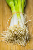 Spring onion on a plank Royalty Free Stock Images
