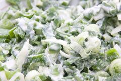 Spring onion salad Royalty Free Stock Photography