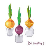 Spring onion set. Spring onions in glass jars, healthy food, spring cocept. Vector illustration in eps8 format Stock Photos