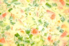 Spring Onion and Tomato Omelet Royalty Free Stock Photos
