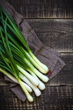 Spring onion Royalty Free Stock Photography