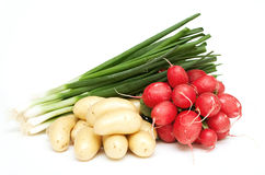 Spring onion, young potatoes and radish Stock Photography