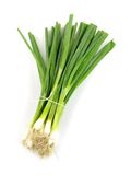 Spring Onions Stock Image