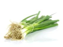 Spring Onions Stock Photos