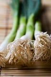 Spring onions Royalty Free Stock Photos