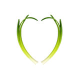 Spring Onions Royalty Free Stock Image