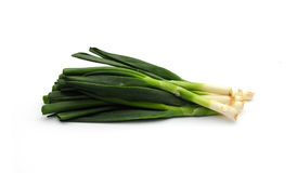 Spring onions. Shot of some fresh green spring onions on white Stock Photo